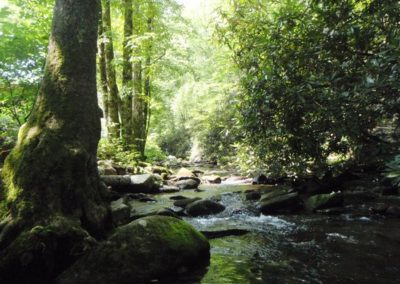 panther-creek-at-tumbling (1)